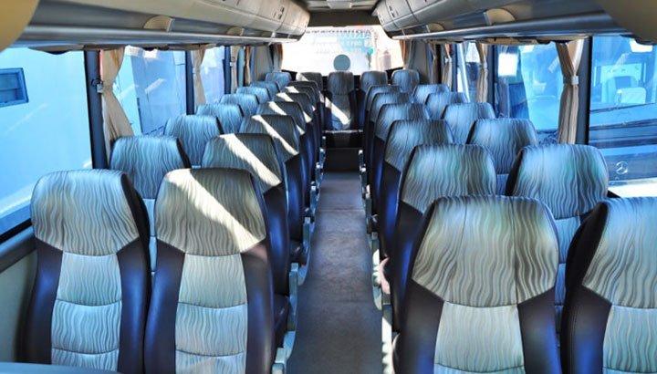 medium bus pariwisata