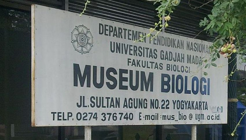 Lokasi Museum Biologi Yogyakarta