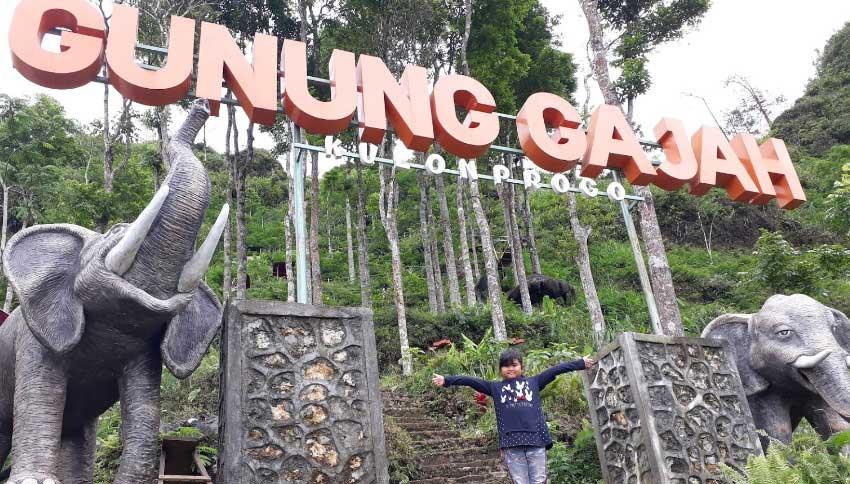 Wisata Tebing Gunung Gajah
