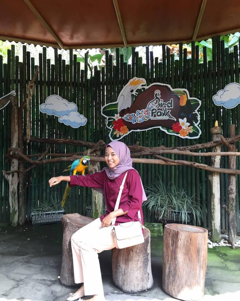 Taman Hewan dan Area Konservasi @viknsrTaman Hewan dan Area Konservasi @viknsr